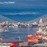 Сдать мусор во Владивостоке