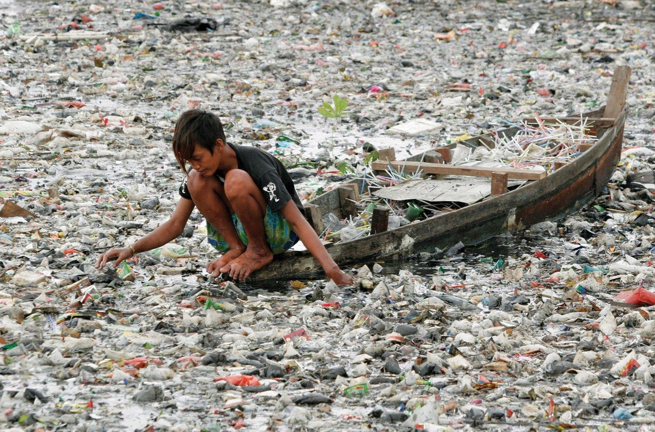 environmental problems created by plastic bags essay