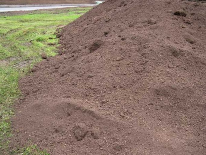 Подзолистая почва2