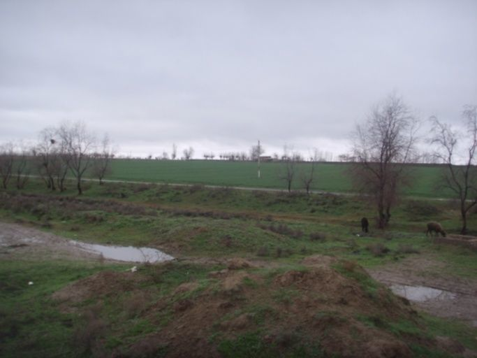 Мокрая земля