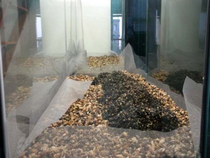 Минеральные компоненты почвы
