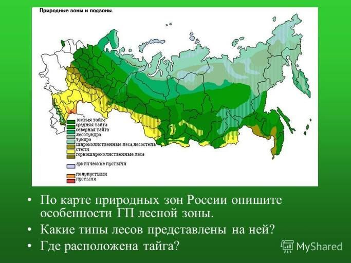 карта Тайги