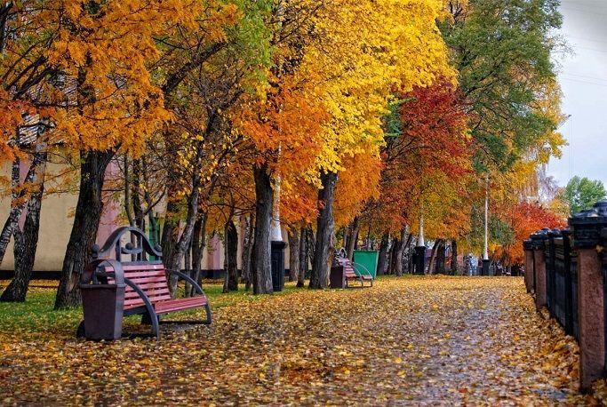 Климат в Кемерово