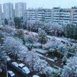 Климат Белгорода