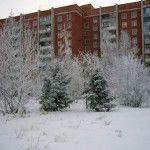 Климат Омска
