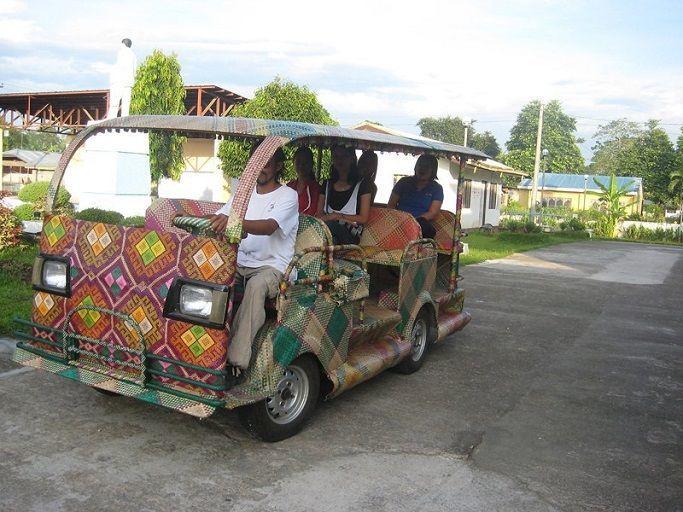 Такси из бамбука