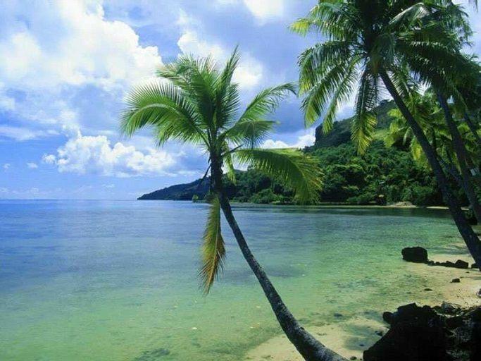 Климат тропического пояса