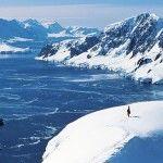 Антарктическая тундра