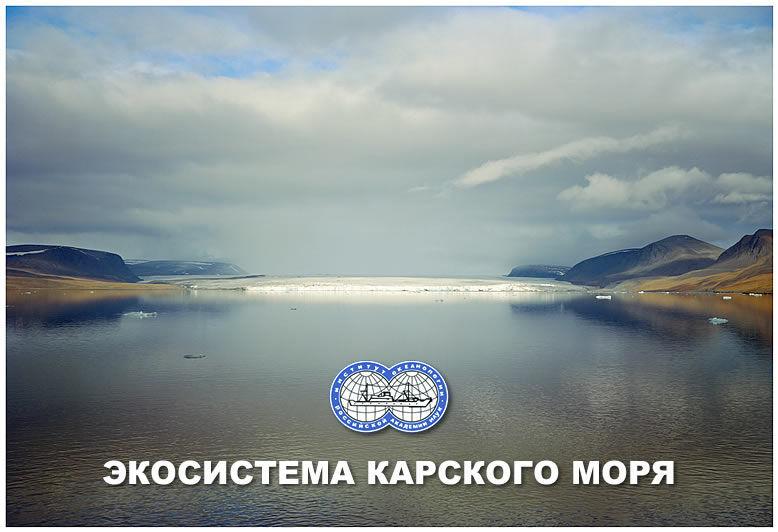 Экосистема Карского моря