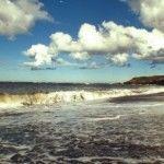Проблемы экологии Карского моря