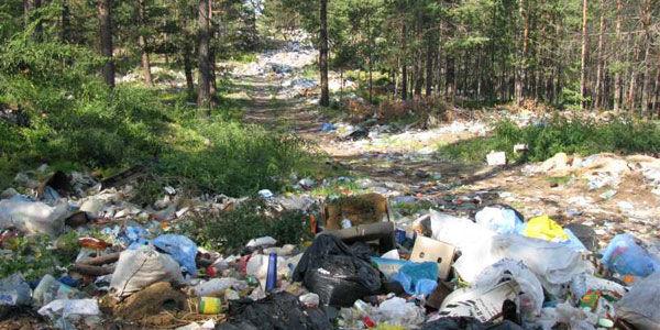 экологической проблемой Воронежа