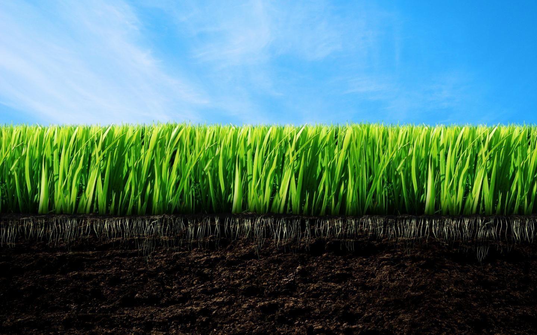 Использование в сельском хозяйстве