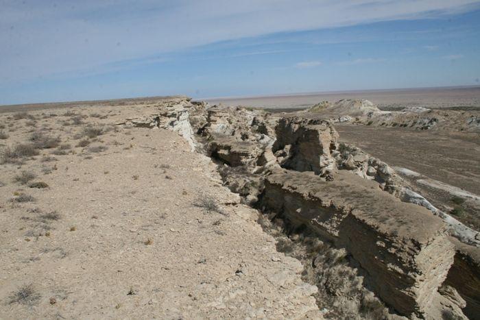 Деградация земель