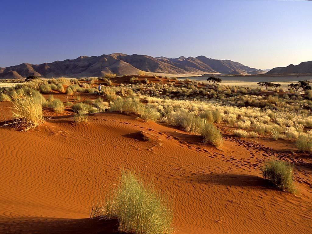 Пустыня горная