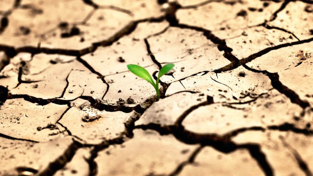 опустыние земли
