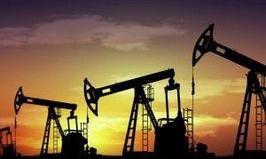 Воздействие нефти экологические проблемы