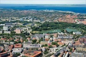 Экосистема города