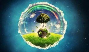 живое вещество биосферы