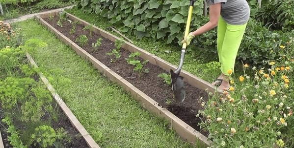 Применение компоста