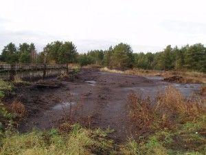 загрязненная земля фото