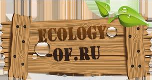 Лого Экология