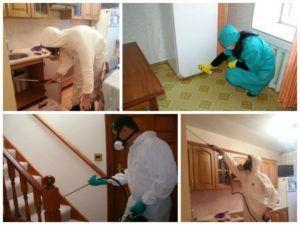 Дезинфекция помещения способствует борьбе с мошкарой
