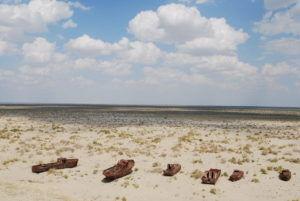 Муйнак на побережье Аральского моря