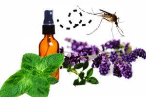 Эфирные масла от мошек и комаров