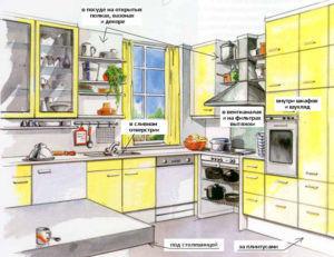 Где живут тараканы на кухне