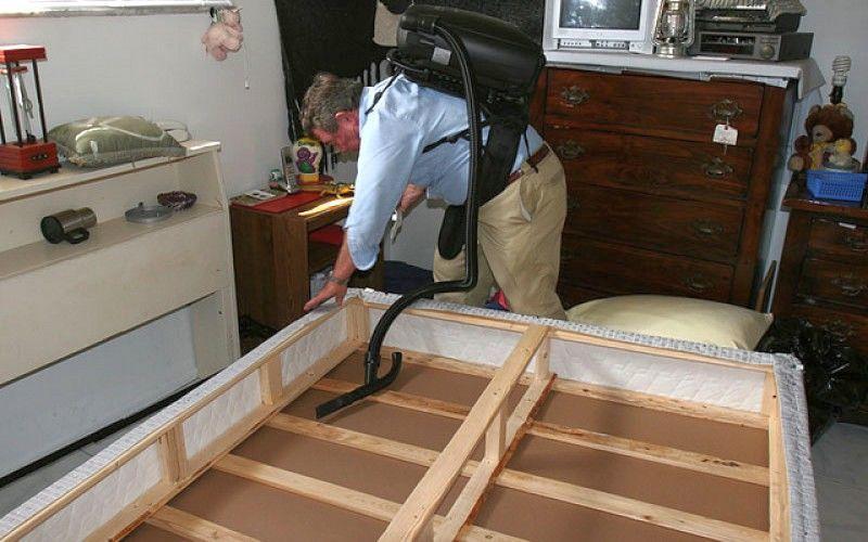 Инсектицидами нужно обрабатывать мебель снутри и снаружи