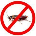 Избавление от тараканов