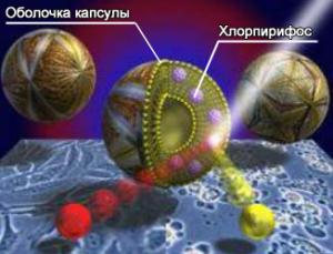 Микрокапсула средства Get в разрезе