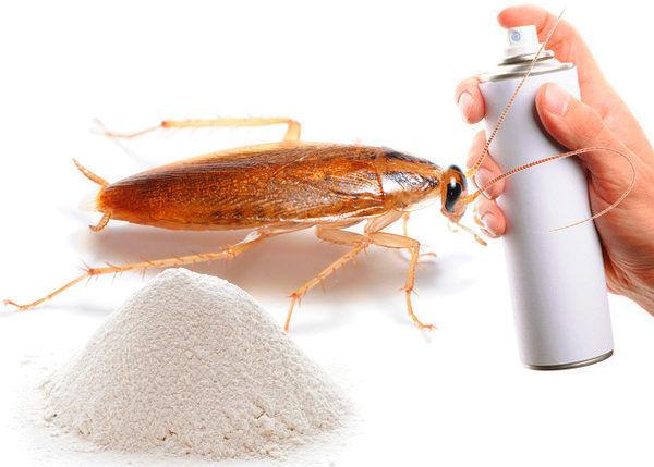 Порошковые и аэрозольные средства от тараканов