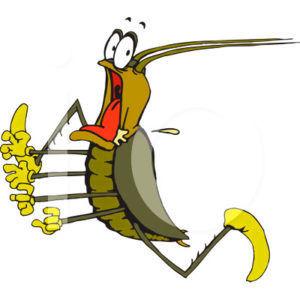 Таракан убегает