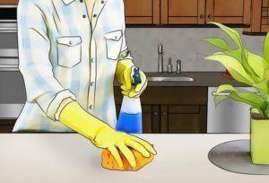 Уборка как профилактика появления мошек