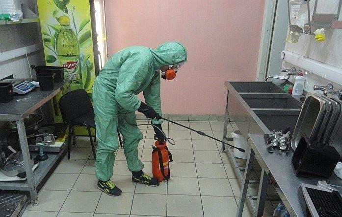 Борьба с тараканами специальными службами