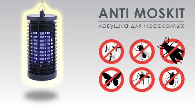 Электрическая ловушка эфективна от насекомых