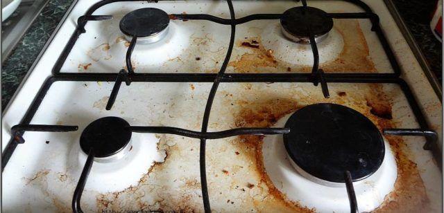 Грязная плита создаёт благоприятные условие обитание тараканам
