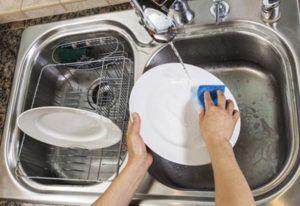 Мойка посуды снизит шанс на появление мошки у вас дома