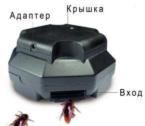 Описание ловушек для тараканов