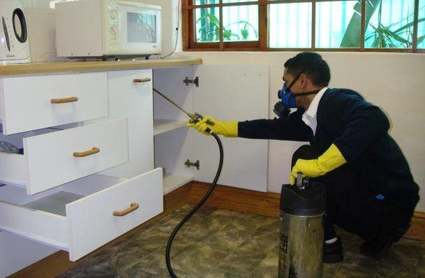 Процесс обработки помещения