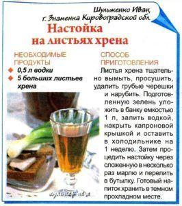 Рецепт настойки из хрена от мошек - прислал наш подписчик С. Евдокименко