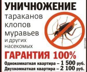 Цены на уничтожение тараканов спец службами