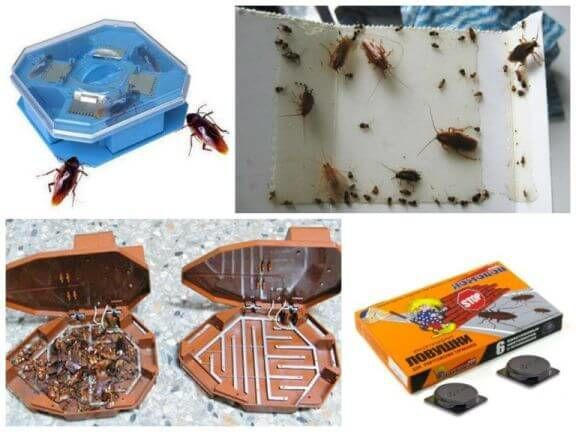 Виды ловушек от тараканов