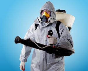 Служба дезинфекции от тараканов