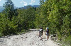 Путешествие пешком к Гегском Водопаду