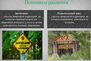 Отличия между парком и заповедником