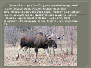 Природный Сочинский парк