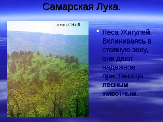 Самарская Лука