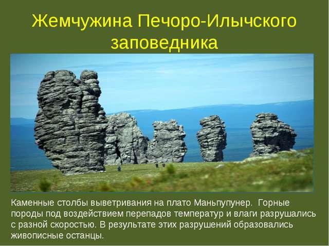 Заповедник Печоро-Илычский